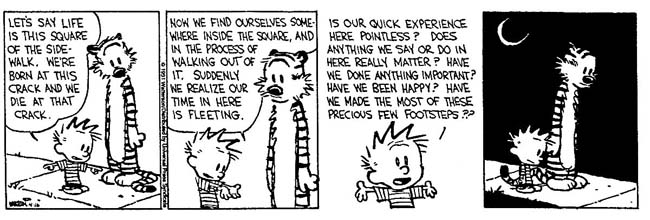 Calvin-gets-existential